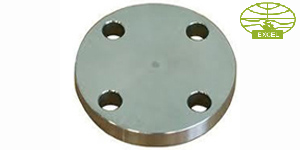 Flat Face Flanges Price in India