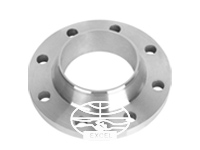 A182 304L Stainless Steel Forged Flanges