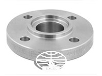 A182 304L Stainless Steel Groove & Tongue Flanges
