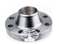 A182 304L Stainless Steel Weld Neck Flanges
