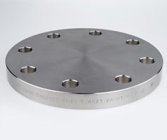 world-class performance Blind Flange 600lb Ser.B