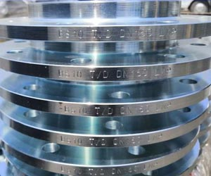 Stainless Steel BS 10 Table D Flanges Supplier in India
