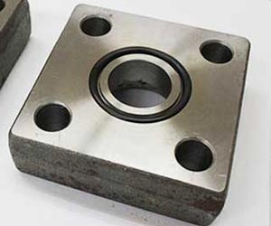 Stainless Steel Square Floor Flanges Distributor in Mumbai
